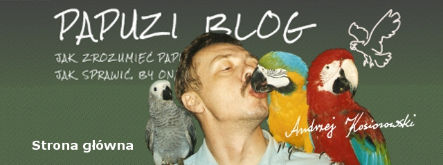 Papuzi Blog